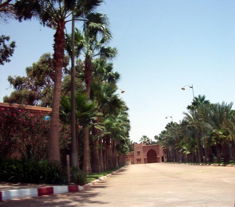 En route vers le sahara, avec ma Mercedes!  - Page 2 100_3647