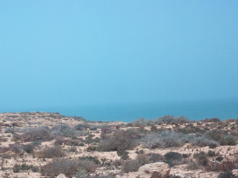 En route vers le sahara, avec ma Mercedes!  - Page 2 100_3718