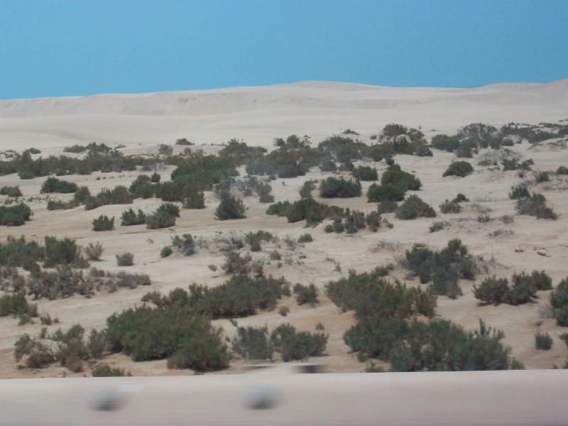 En route vers le sahara, avec ma Mercedes!  - Page 2 100_3725