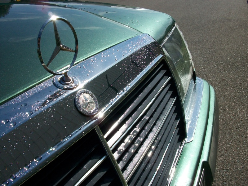 [Présentation] Ma Mercedes, vert malachite..  100_4712