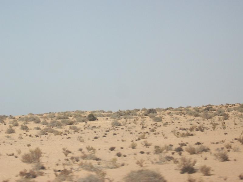 En route vers le sahara, avec ma Mercedes!  - Page 2 Img85110
