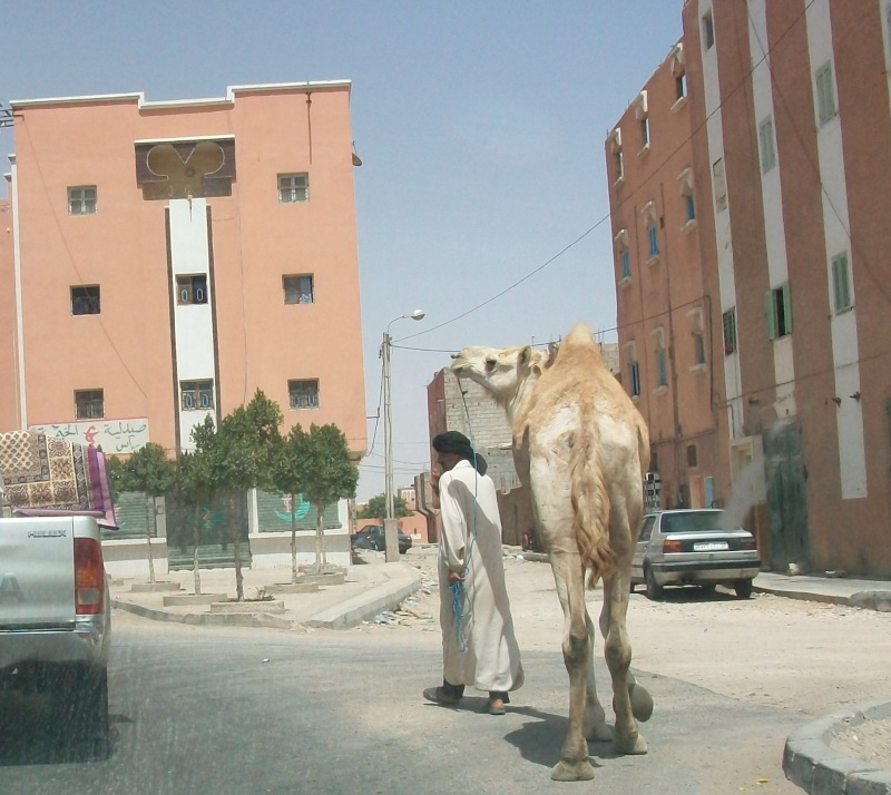 En route vers le sahara, avec ma Mercedes!  - Page 3 Img98910