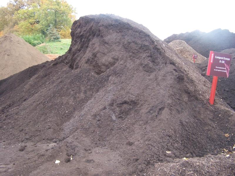 Et si on parlait compost?? 100_0911