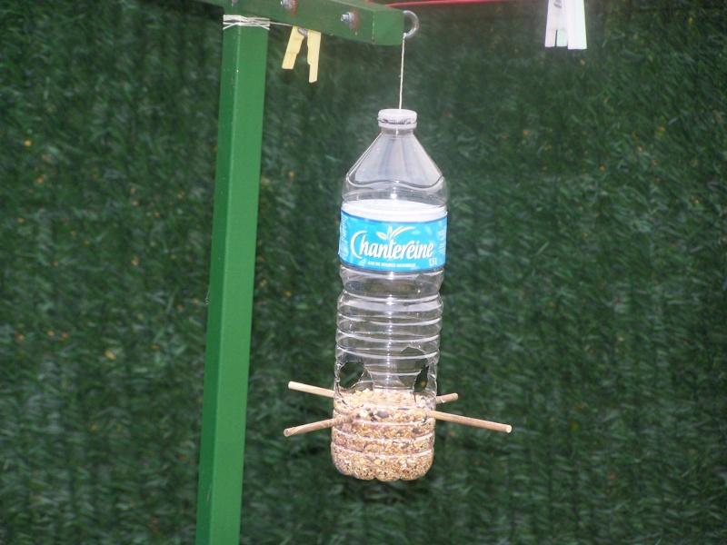 recyclage de bouteilles 100_0917
