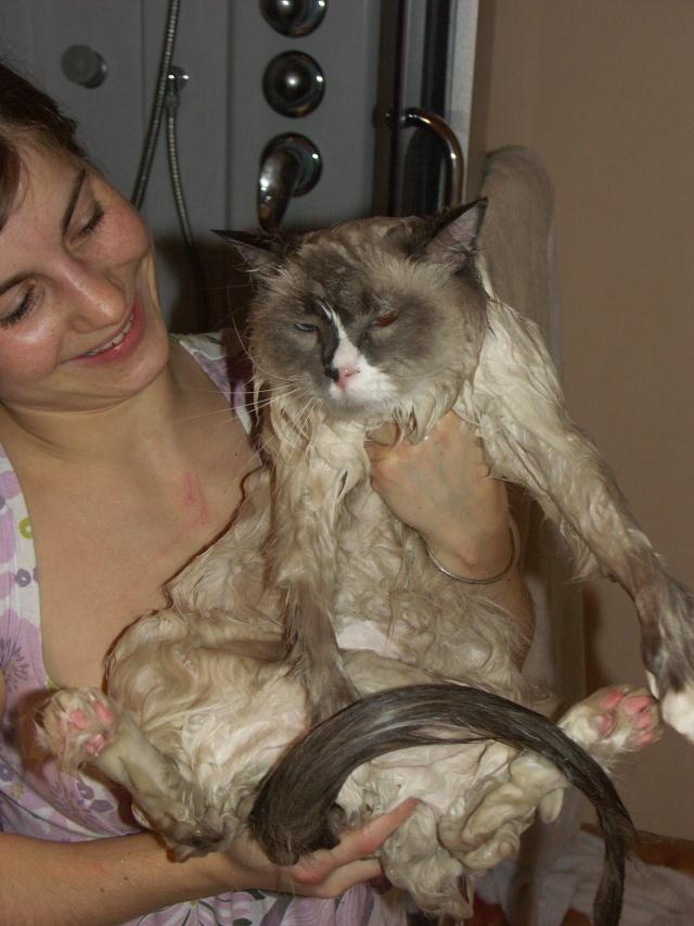 Le bain: photos et vidéos 12-03-10