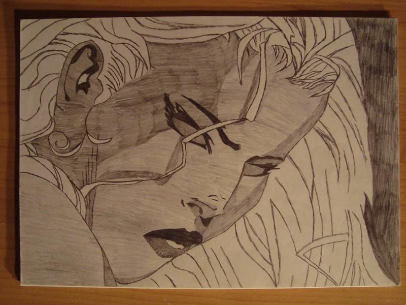 dessins de darkbreeds Dsc01611