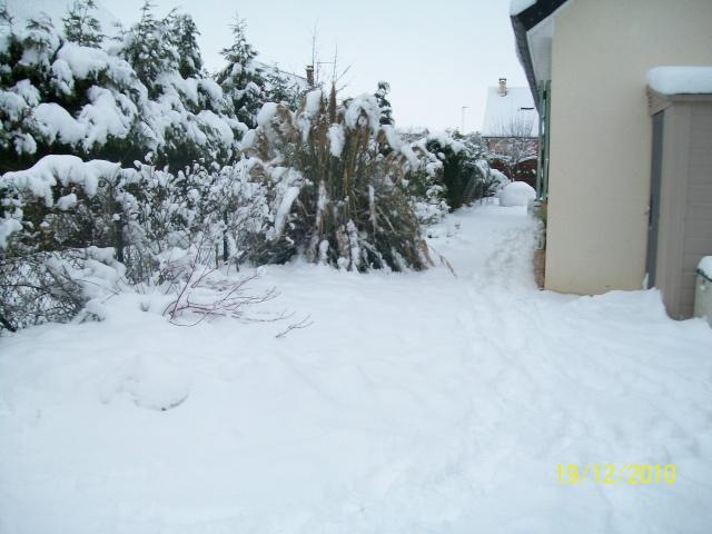 Poster vos images : La france envahie par la neige Decemb11