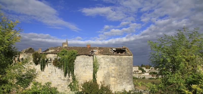 Une promenade à Saint Emilion _mg_2912