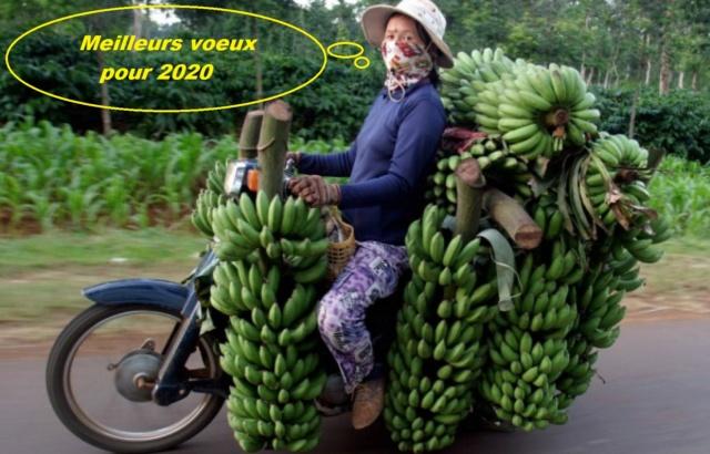 Meilleurs voeux 2020 Banani10