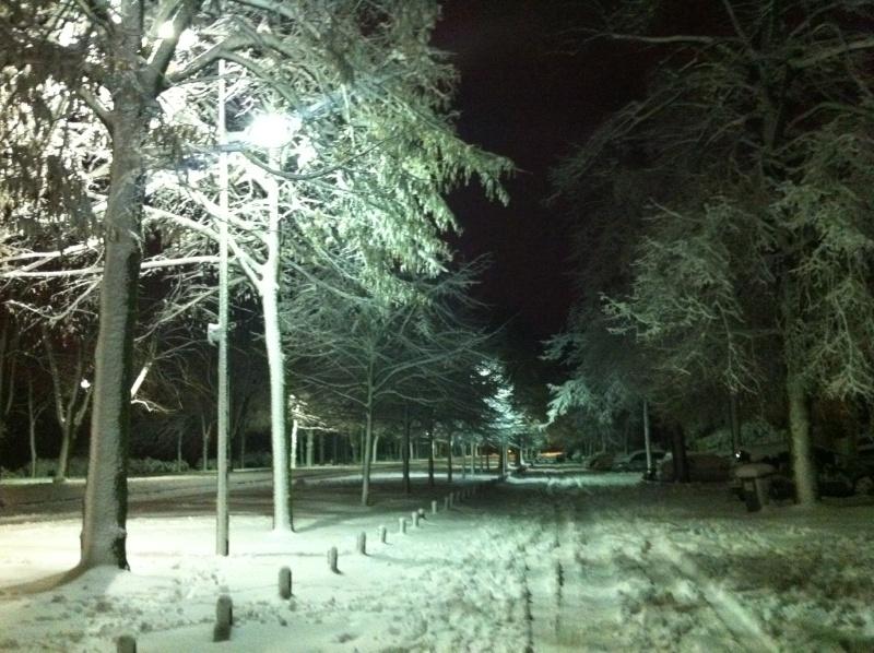 Avenue du Château sous la neige Décembre 2010 Img_4811