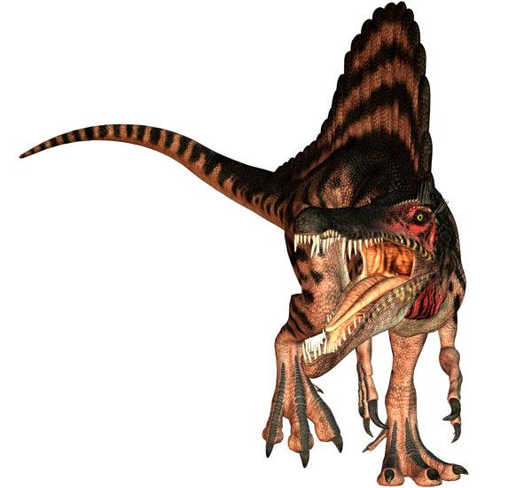 Spinosaurus Spinos10