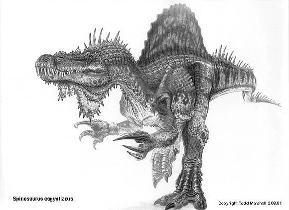 Spinosaurus Spinos11