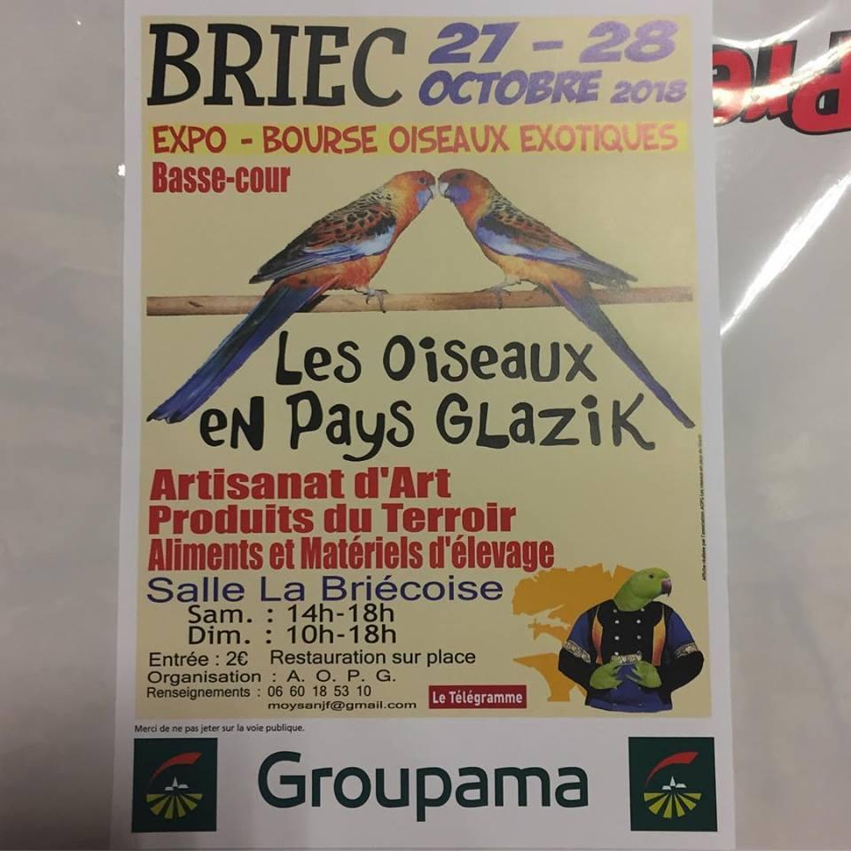 Expo-Bourse à Briec (27-28/10/2018) 40520610