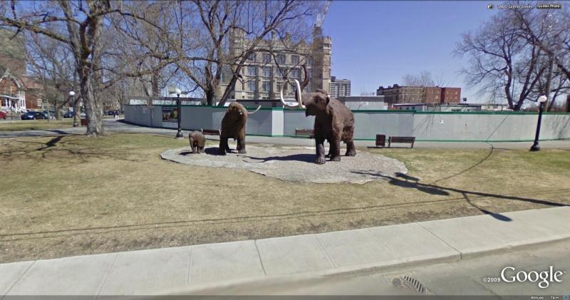 STREET VIEW : Les statues d'animaux dans le monde - Page 2 Mammou10