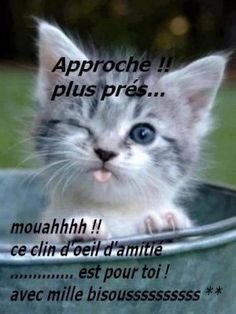 *coucou mes amies* - Page 23 1ba5a510