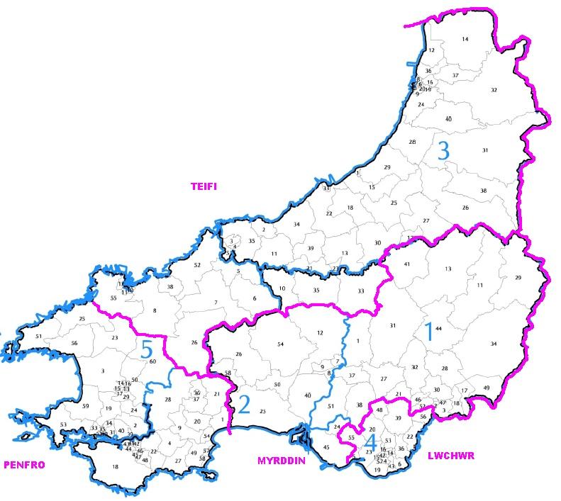 Wales 30 Dyfed310