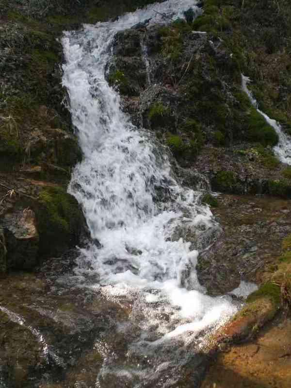 11 - concours les ruisseaux... photos reçues ! - Page 2 L_sour10