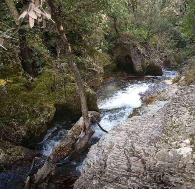 11 - concours les ruisseaux... photos reçues ! - Page 2 Lelata10