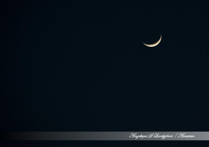 Croissant de lune  1210