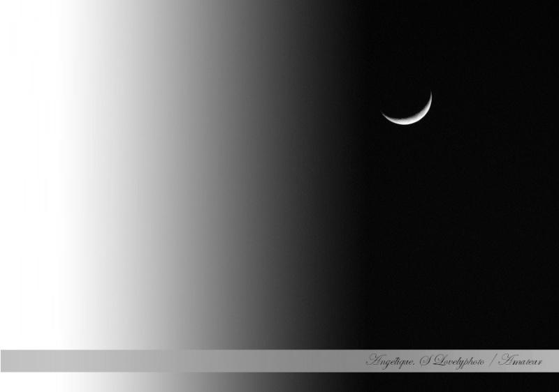 Croissant de lune  12310