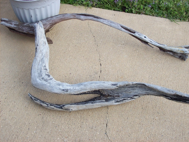 Driftwood for the 120 gallon.  100_3120