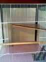 grande cage a vendre Photo015
