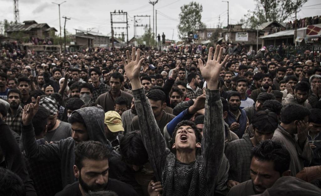 Cachemira [India] 15253412