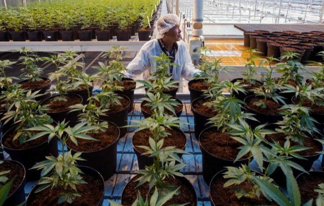 Libre comercio, sus repercusiones en el tráfico de drogas. - Página 7 15395410