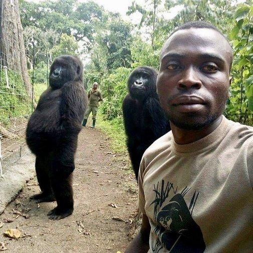 República  Democrática  del Congo:  miles de  personas  huyen de  los choques  militares. - Página 2 15560210