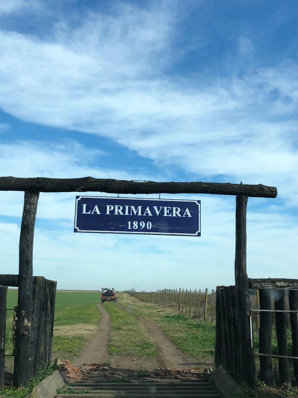 ¿Se puede masificar la producción agroecológica? El caso del terrateniente argentino que eliminó los químicos y redujo sus costos un 60 %  60b4c712