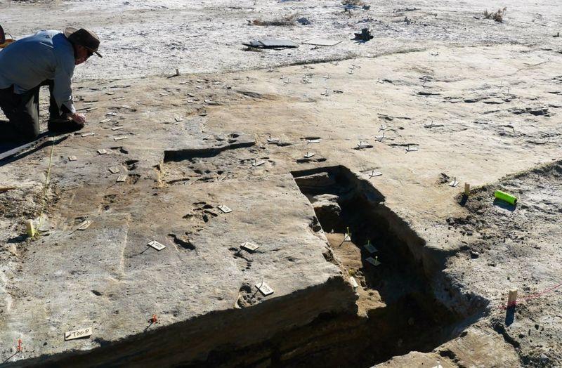 América. Actividad humana hace 23.000 años, milenios antes de lo conocido hasta ahora. Huellas halladas en Nuevo México. [Historia]  _1206610