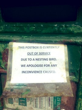 Cork postbox is put out of action for the most Irish reason ever Edtdtl11