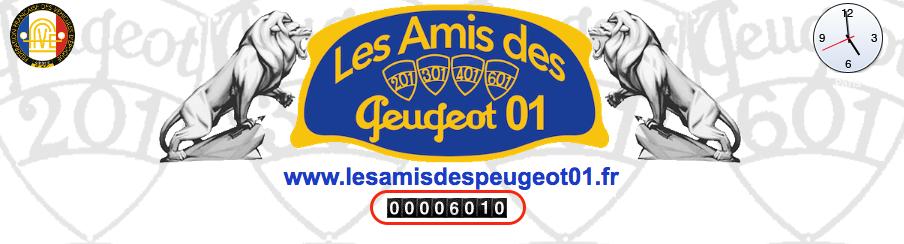 6000ème clic dépassé sur notre portail ! Clic11