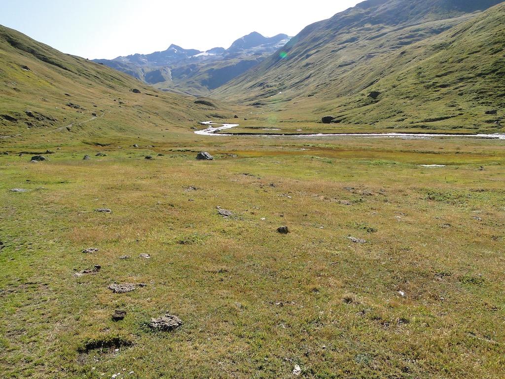 Termignon (Plume Fine) / Col de la Rocheure / Val d'Isère Dsc06730