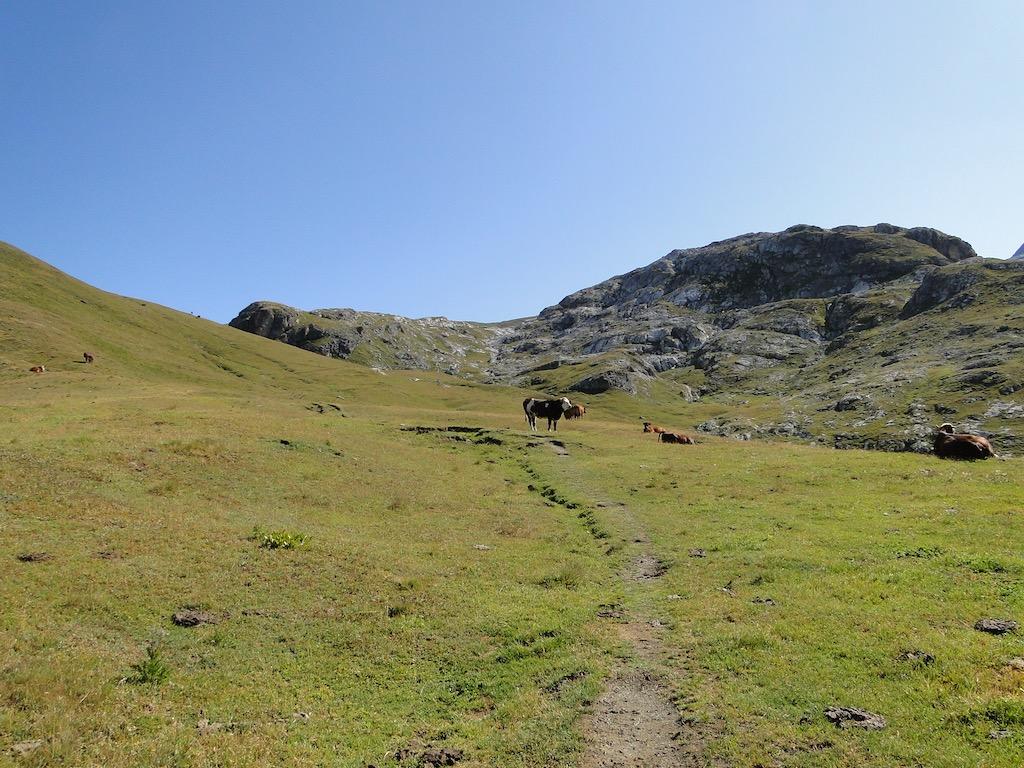 Termignon (Plume Fine) / Col de la Rocheure / Val d'Isère Dsc06754