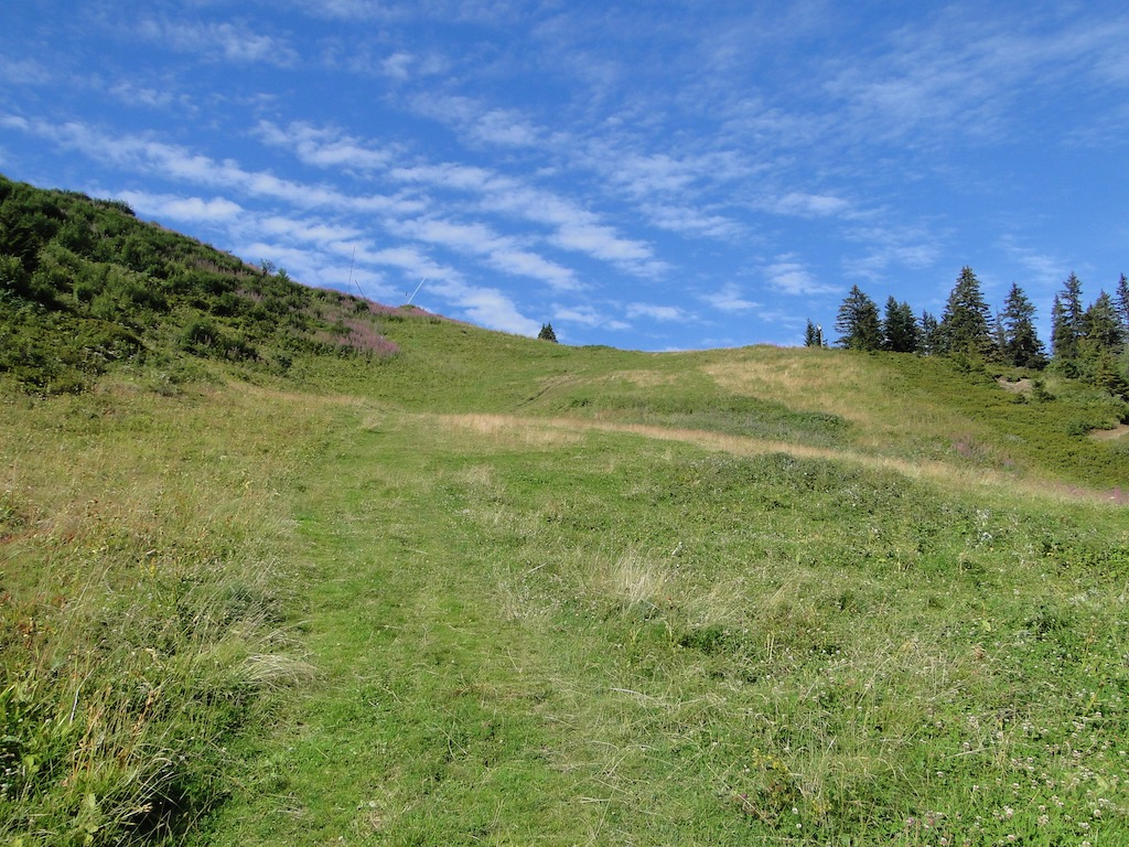 Morgins (CH) - Pointe de l'Au - Col des Portes du Soleil Dsc07014