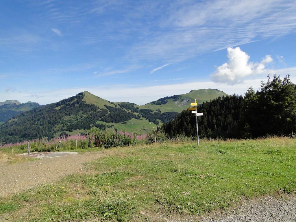 Morgins (CH) - Pointe de l'Au - Col des Portes du Soleil Dsc07021