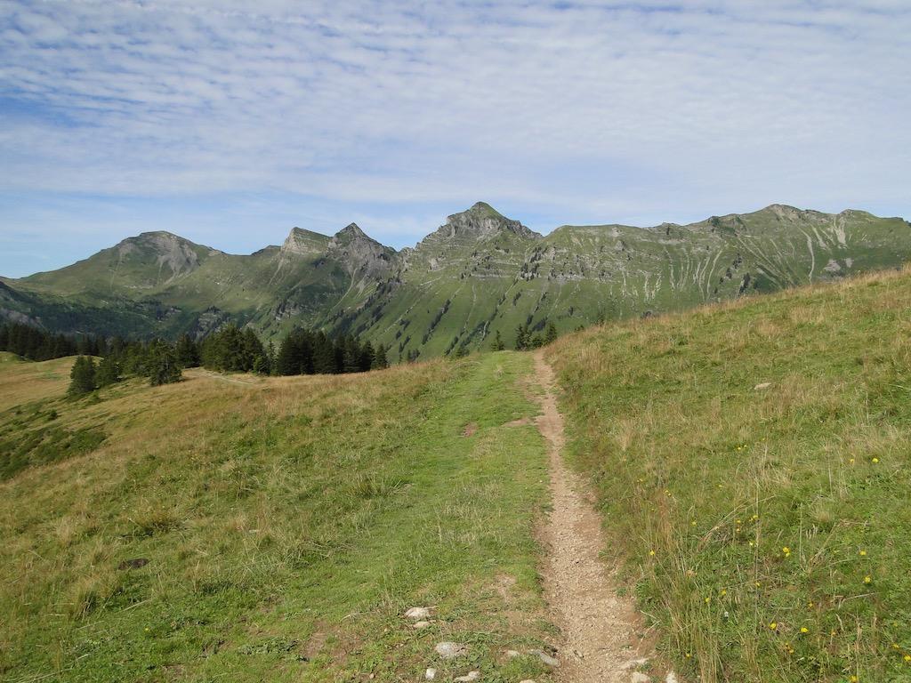 Morgins (CH) - Pointe de l'Au - Col des Portes du Soleil Dsc07031