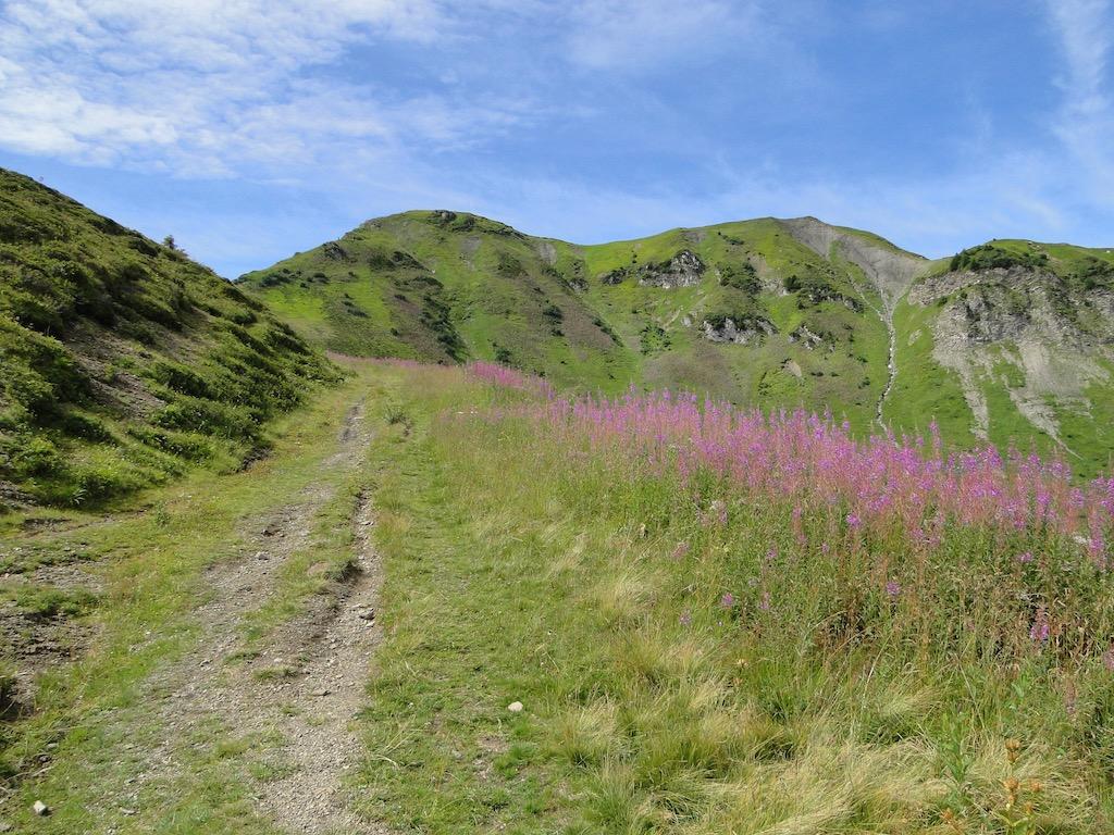 Morgins (CH) - Pointe de l'Au - Col des Portes du Soleil Dsc07036