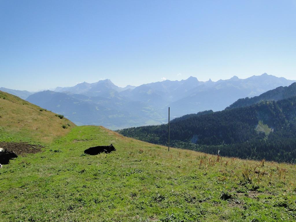 Châtel - Pointe des Ombrieux - Le Morclan - Châtel Dsc07121