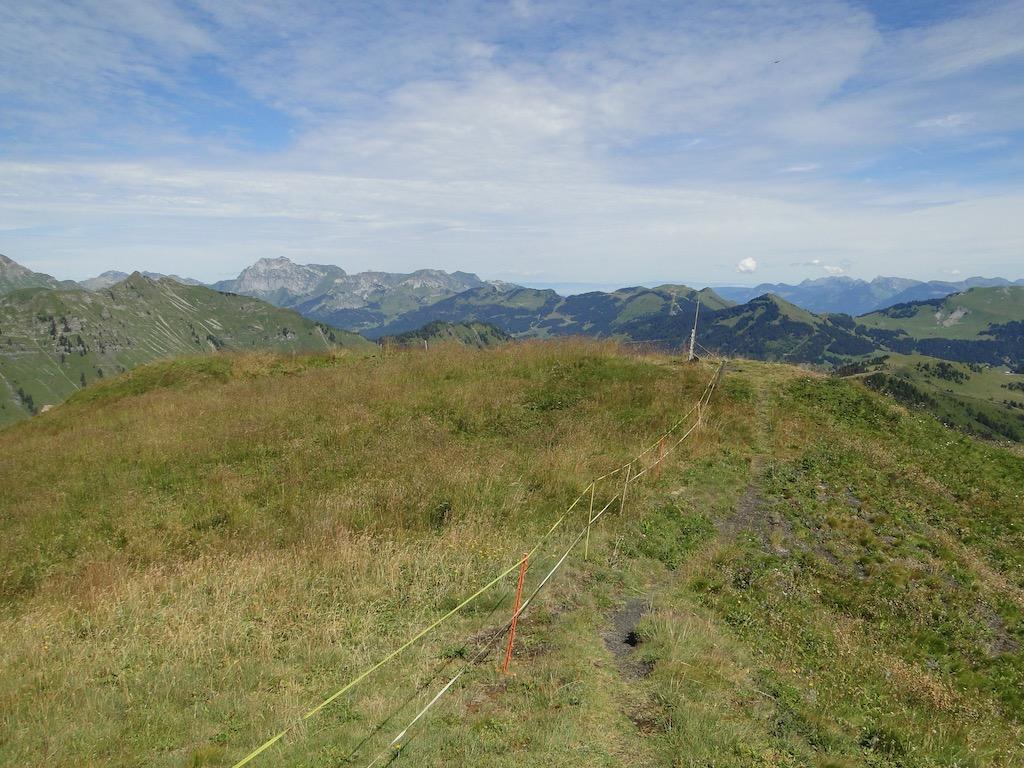 Morgins (CH) - Pointe de l'Au - Col des Portes du Soleil Dsc07139
