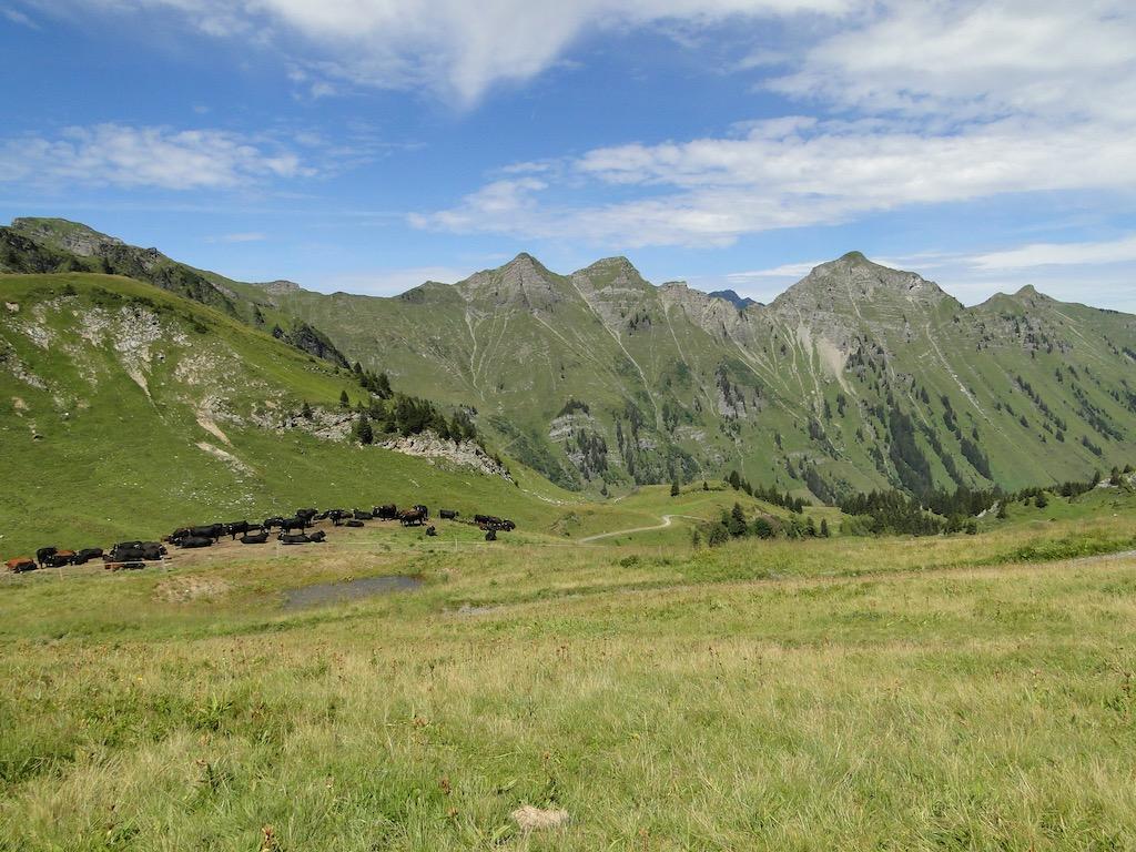 Morgins (CH) - Pointe de l'Au - Col des Portes du Soleil Dsc07154
