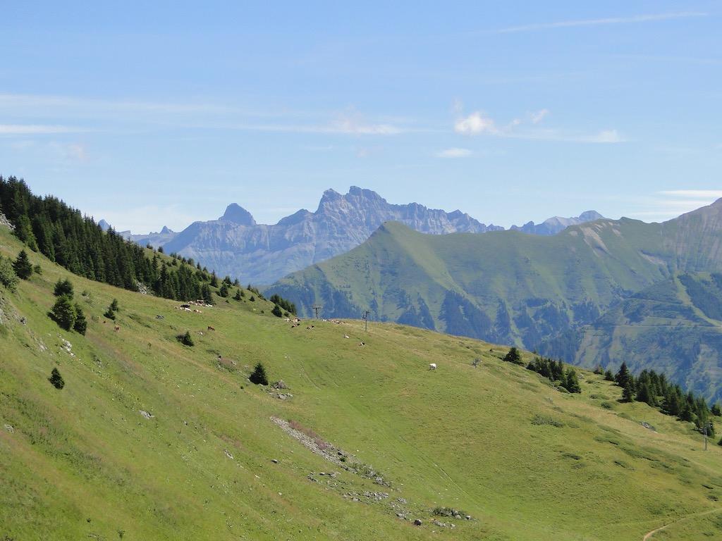 Morgins (CH) - Pointe de l'Au - Col des Portes du Soleil Dsc07155