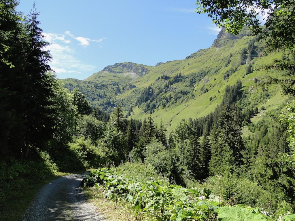 Morgins (CH) - Pointe de l'Au - Col des Portes du Soleil Dsc07158