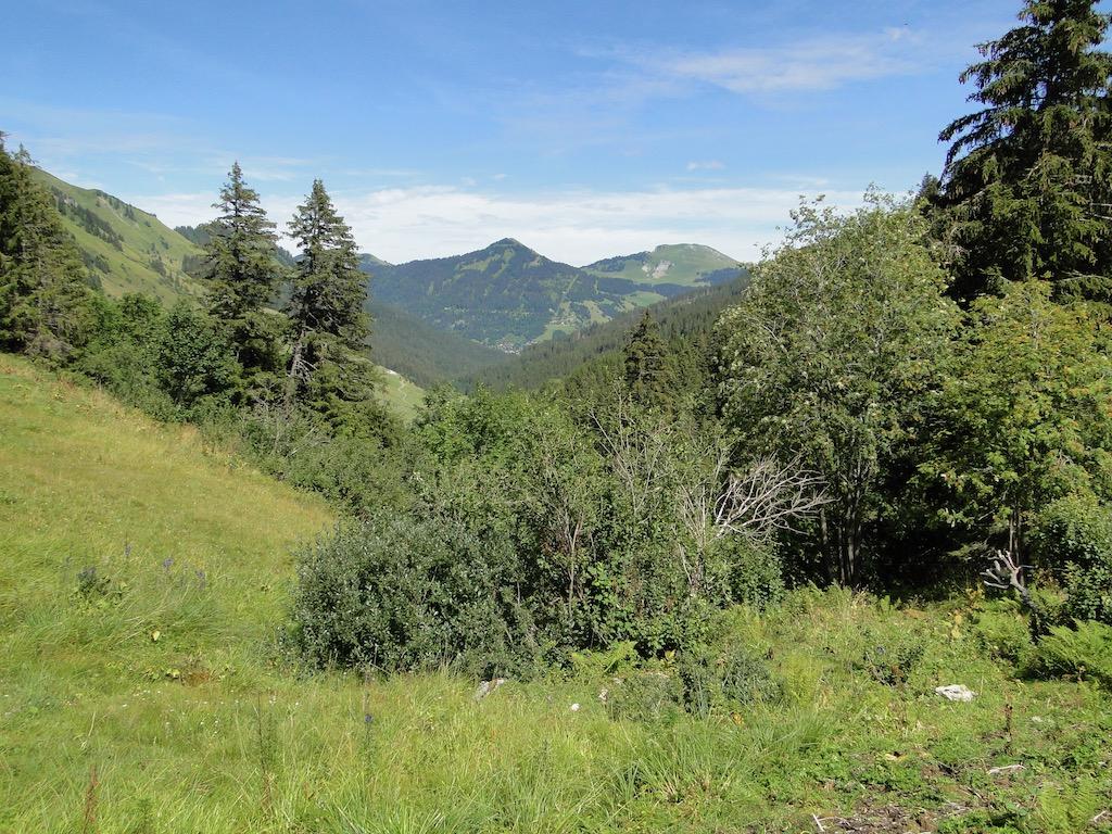 Morgins (CH) - Pointe de l'Au - Col des Portes du Soleil Dsc07160
