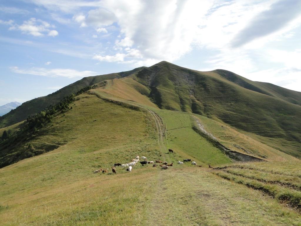 La Toussuire - Col du Marolay - Le Grand Truc Dsc07241