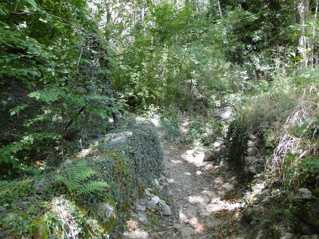 Saint-Jean-de-Maurienne - La Toussuire Dsc07349