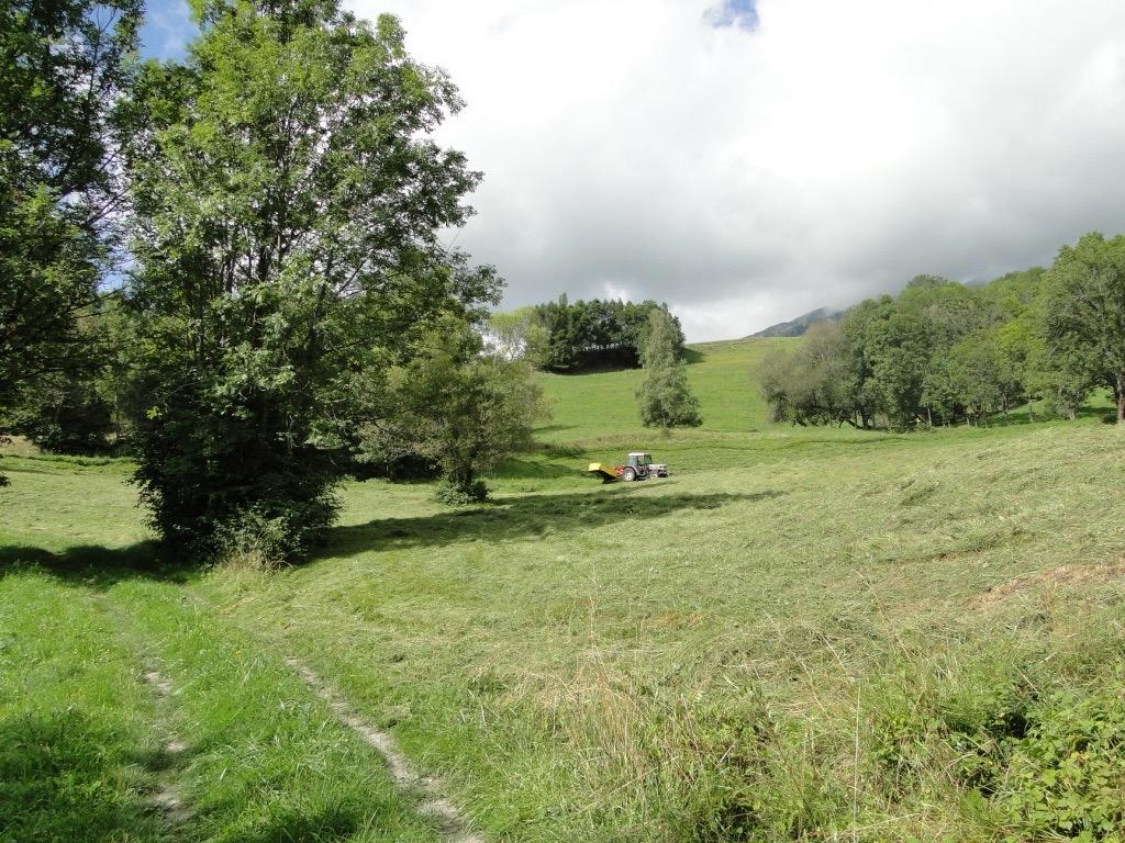 Saint-Jean-de-Maurienne - La Toussuire Dsc07355