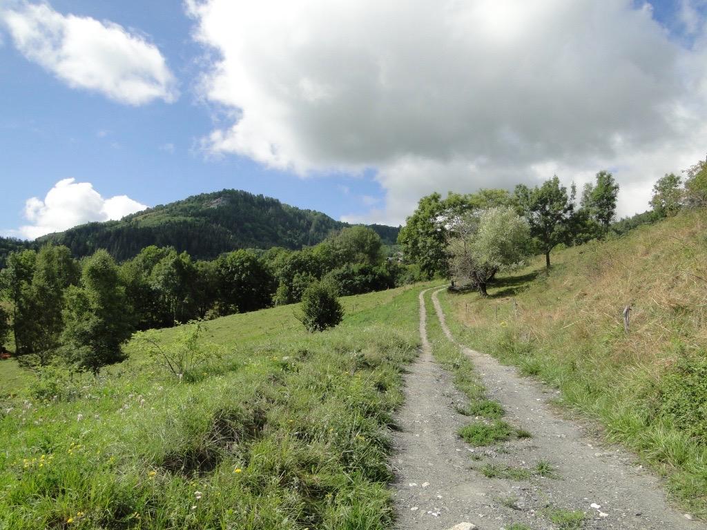 Saint-Jean-de-Maurienne - La Toussuire Dsc07358