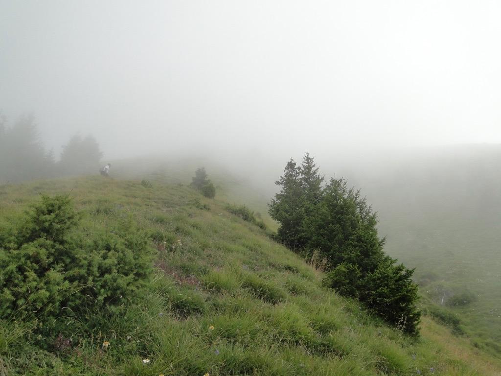 Boucle du Mont Charvin Dsc07394
